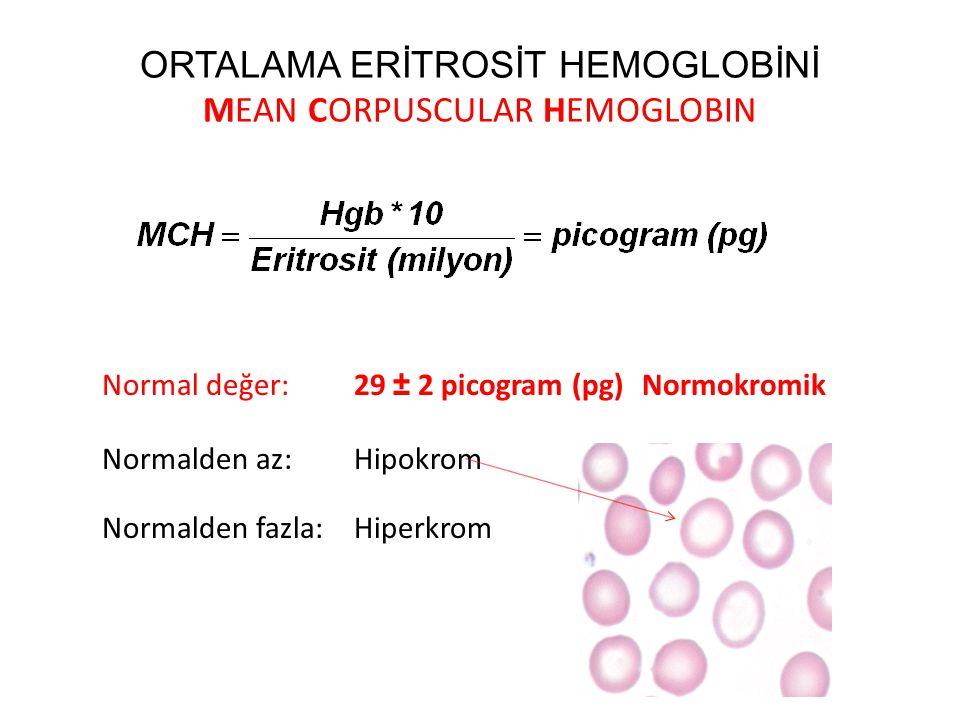 ORTALAMA ERİTROSİT HEMOGLOBİNİ MEAN CORPUSCULAR HEMOGLOBIN