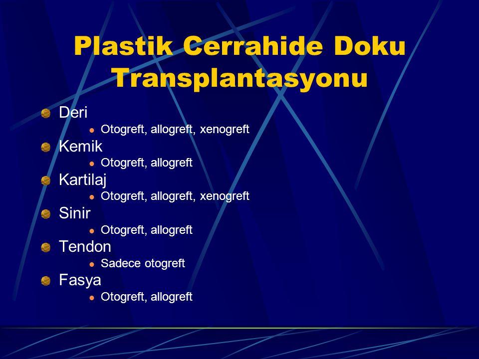 Plastik Cerrahide Doku Transplantasyonu