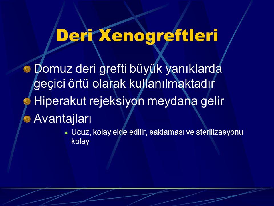 Deri Xenogreftleri Domuz deri grefti büyük yanıklarda geçici örtü olarak kullanılmaktadır. Hiperakut rejeksiyon meydana gelir.