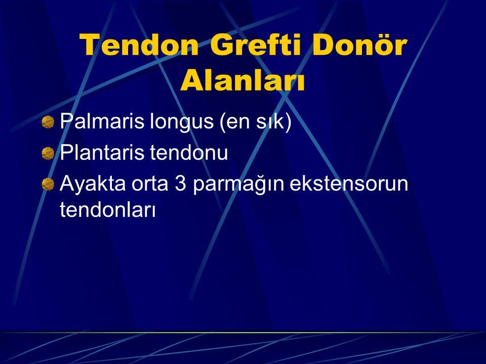 Tendon Grefti Donör Alanları