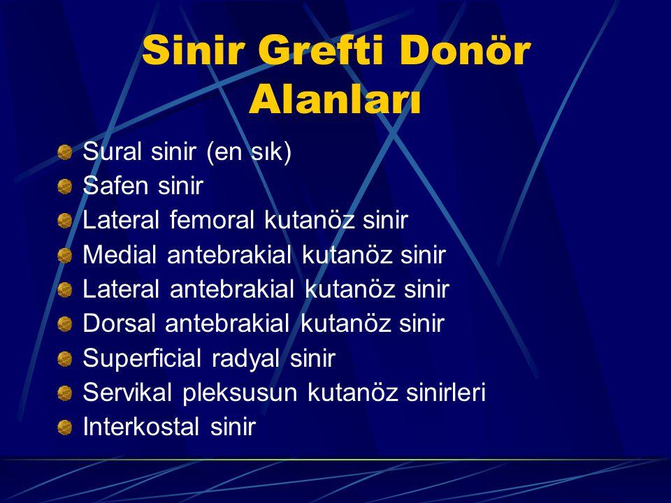 Sinir Grefti Donör Alanları