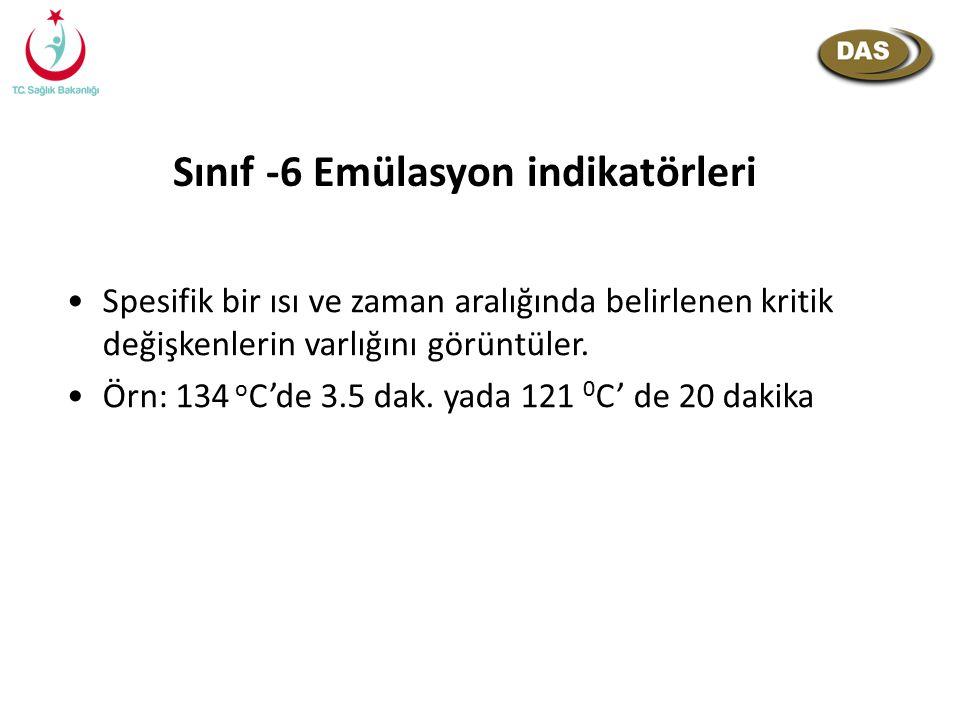 Sınıf -6 Emülasyon indikatörleri