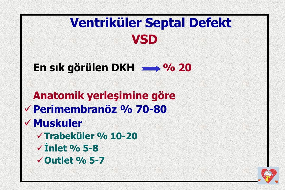 Ventriküler Septal Defekt