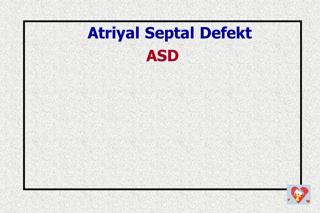 Atriyal Septal Defekt ASD