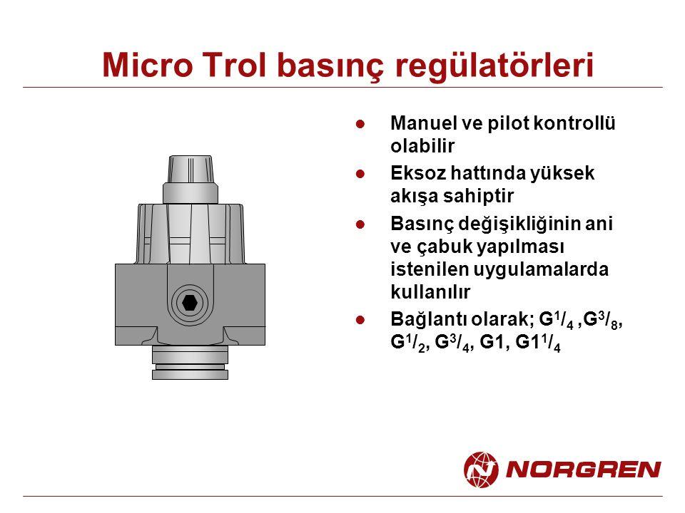 Micro Trol basınç regülatörleri