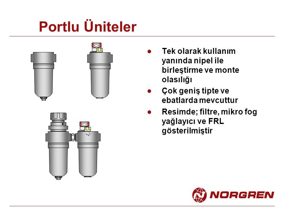 Portlu Üniteler Tek olarak kullanım yanında nipel ile birleştirme ve monte olasılığı. Çok geniş tipte ve ebatlarda mevcuttur.