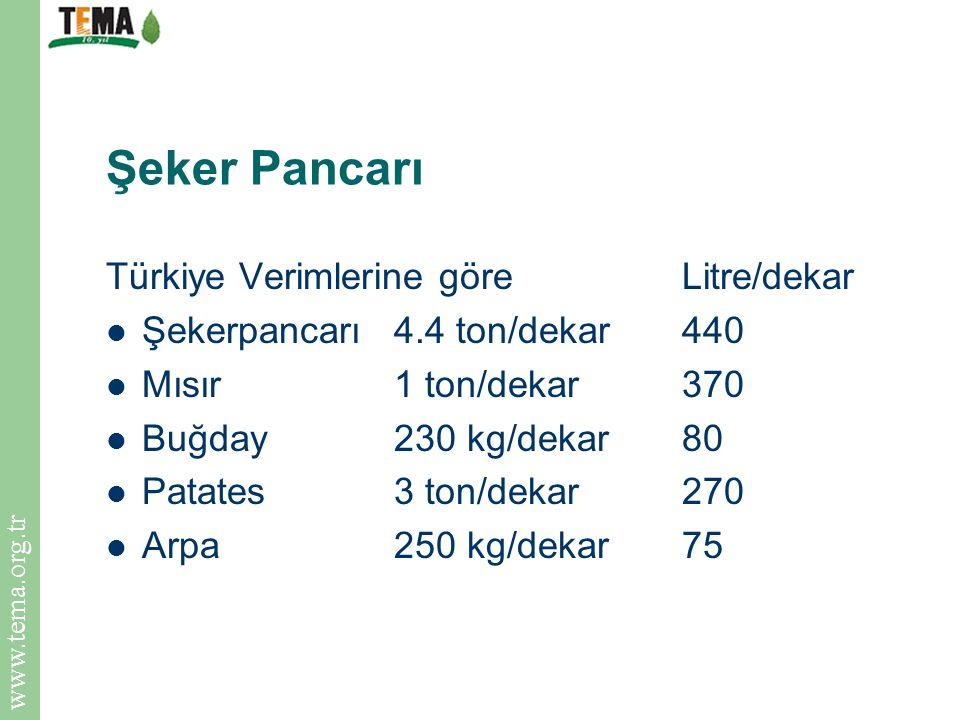 Şeker Pancarı Türkiye Verimlerine göre Litre/dekar