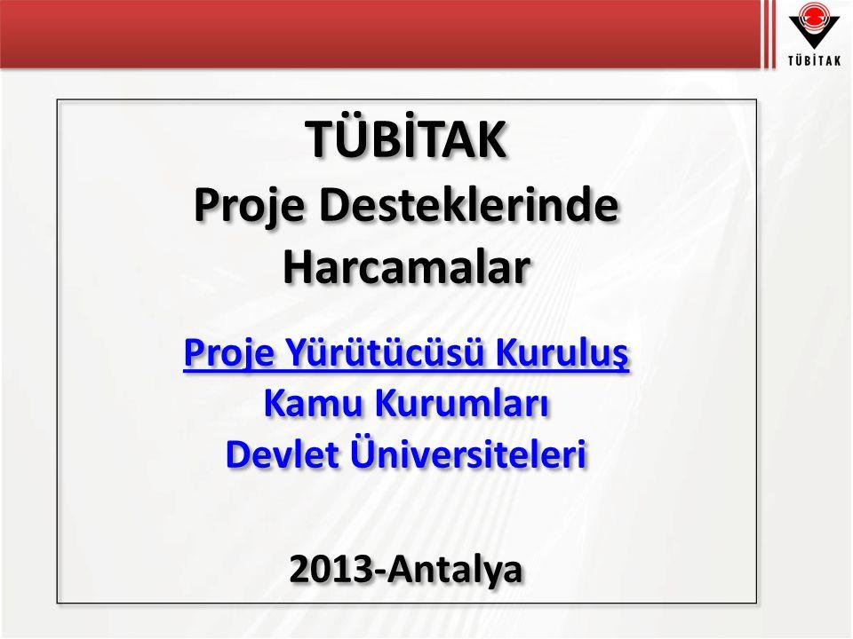 Proje Yürütücüsü Kuruluş Devlet Üniversiteleri