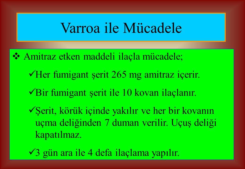 Varroa ile Mücadele Amitraz etken maddeli ilaçla mücadele;