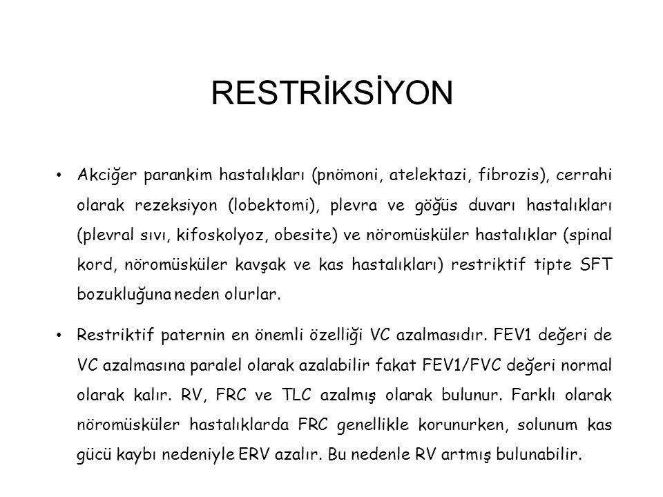 RESTRİKSİYON