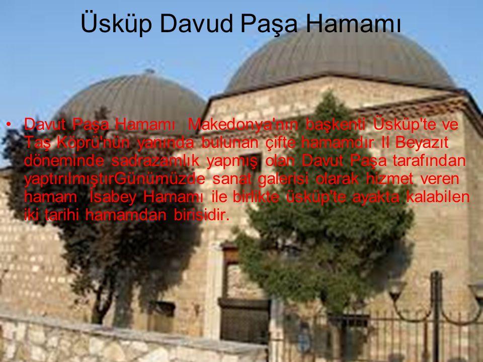 Üsküp Davud Paşa Hamamı