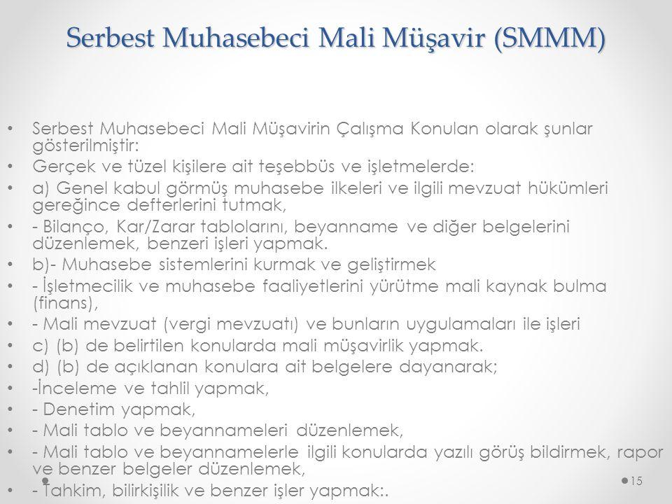 Serbest Muhasebeci Mali Müşavir (SMMM)