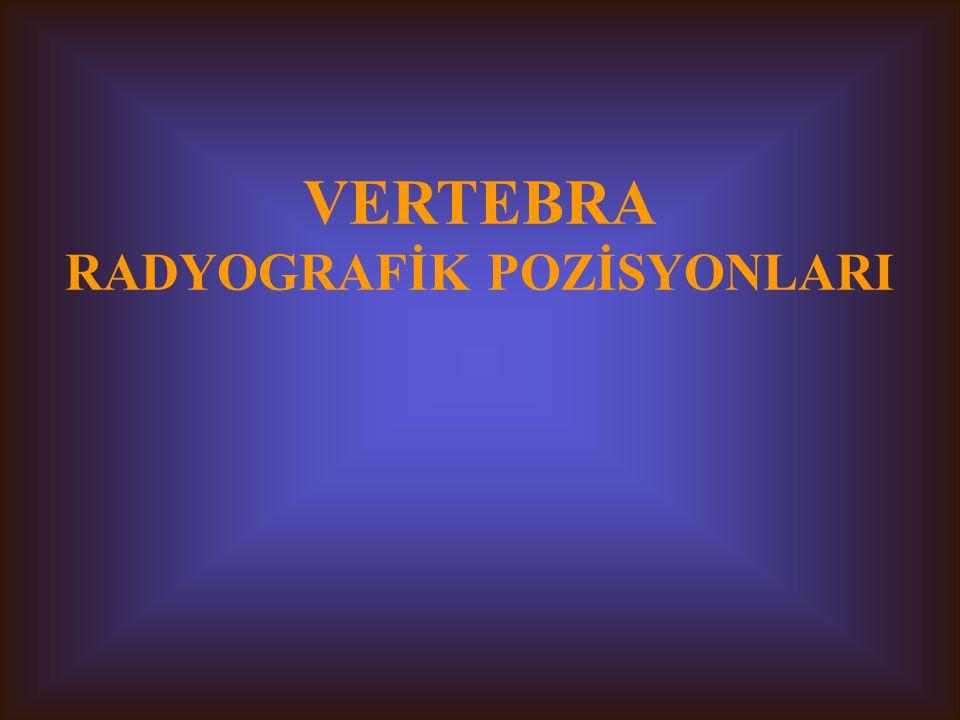 VERTEBRA RADYOGRAFİK POZİSYONLARI
