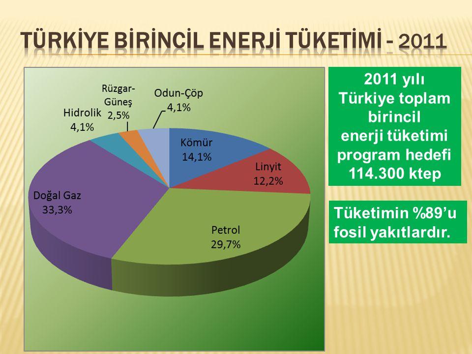 TÜRKİYE Bİrİncİl Enerjİ Tüketİmİ - 2011
