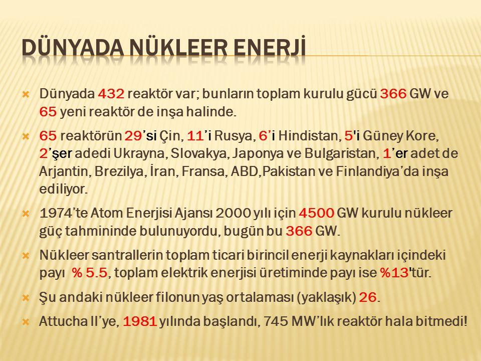 Dünyada Nükleer Enerjİ