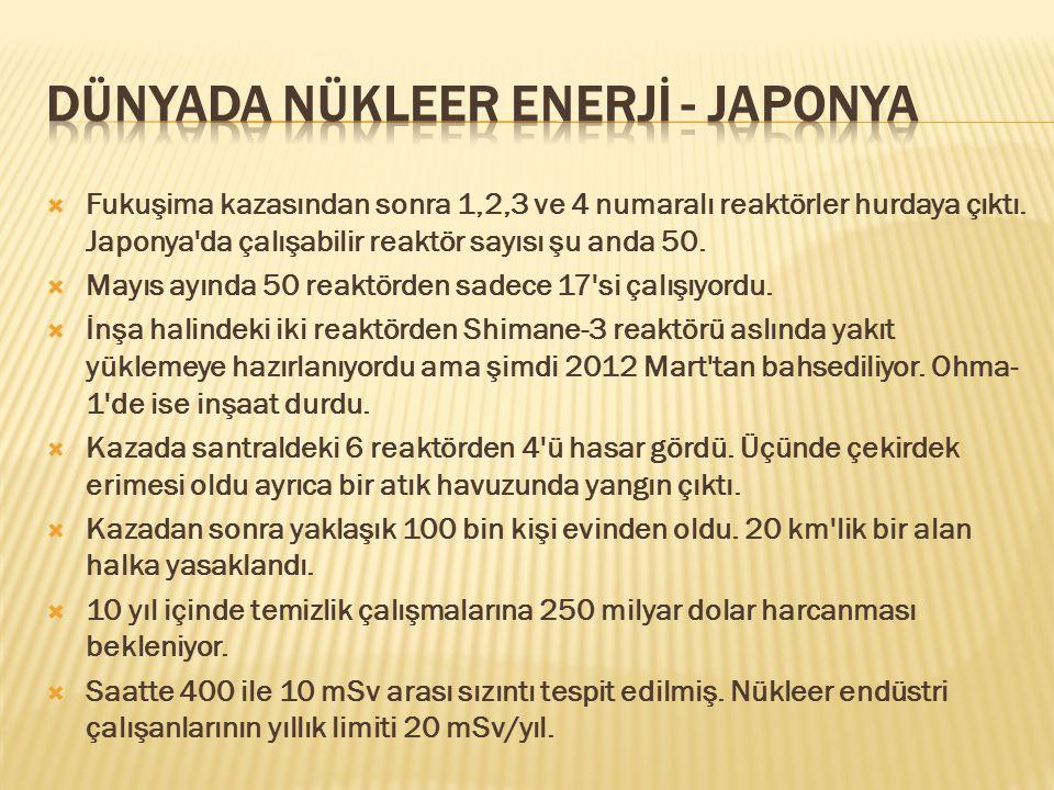 Dünyada Nükleer Enerjİ - JAPONYA