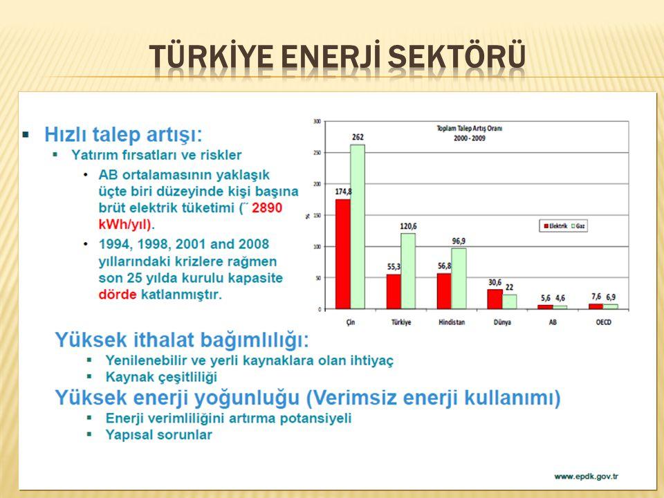 Türkİye Enerjİ Sektörü