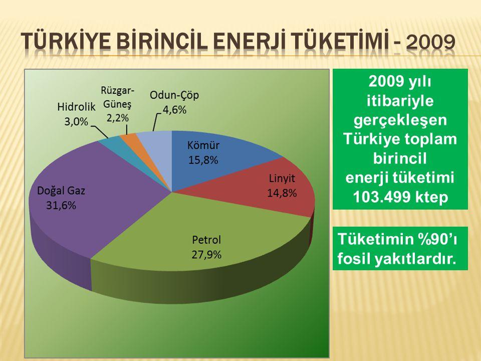 TÜRKİYE Bİrİncİl Enerjİ Tüketİmİ - 2009