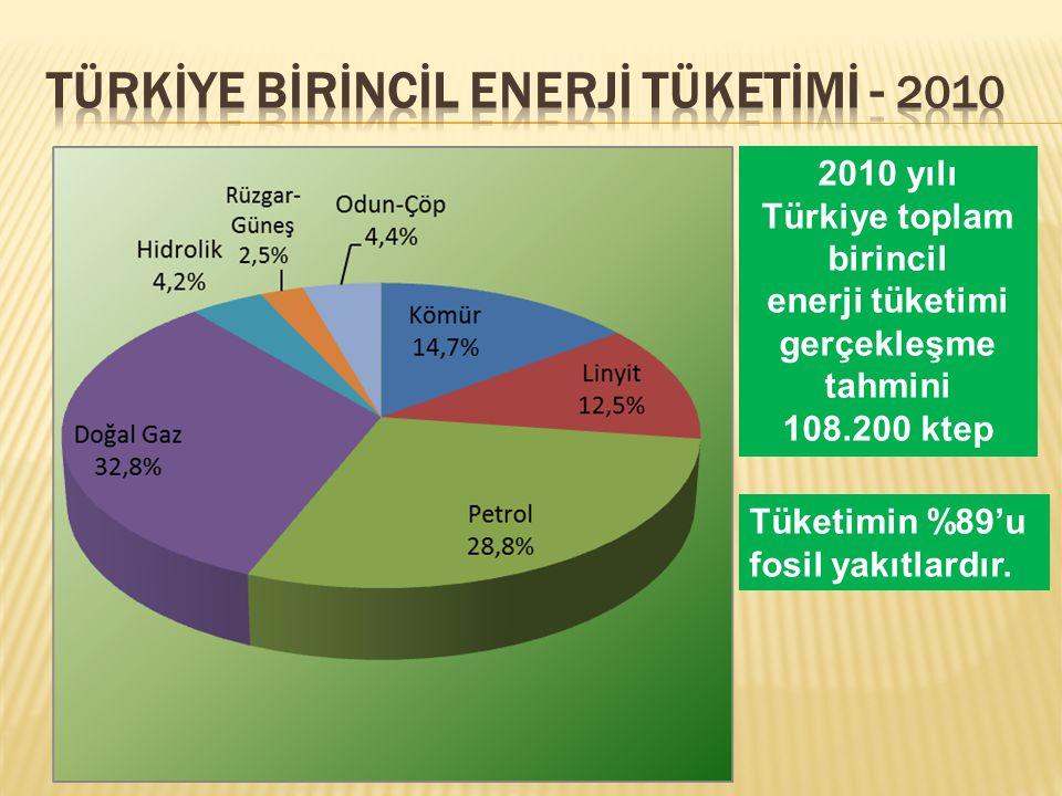 TÜRKİYE Bİrİncİl Enerjİ Tüketİmİ - 2010
