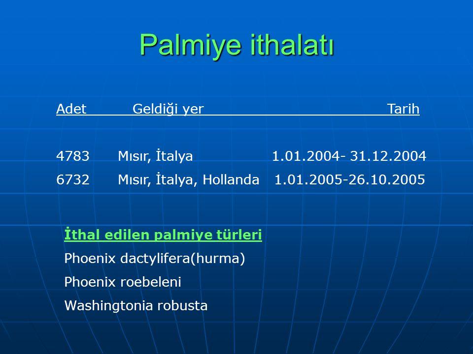 Palmiye ithalatı Adet Geldiği yer Tarih