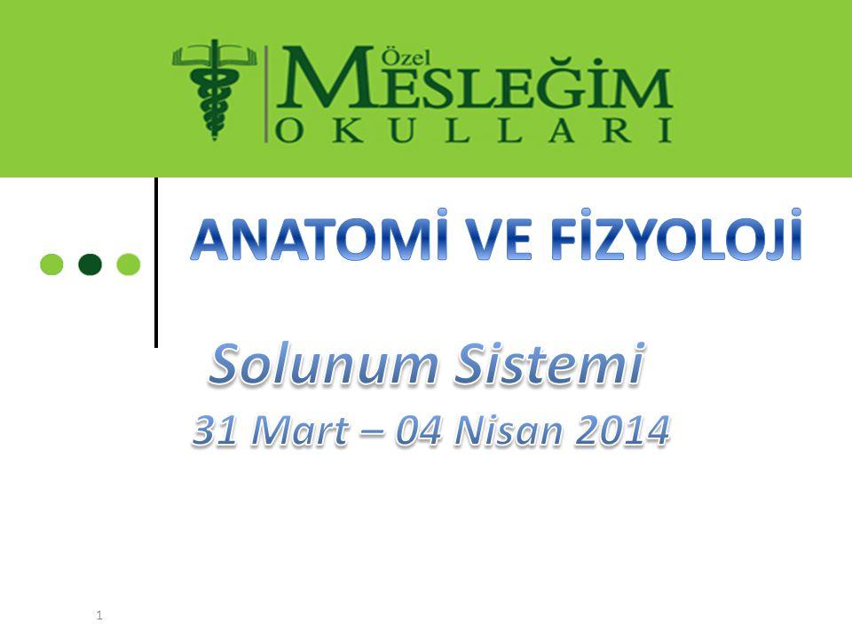 ANATOMİ VE FİZYOLOJİ Solunum Sistemi