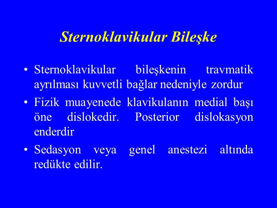 Sternoklavikular Bileşke