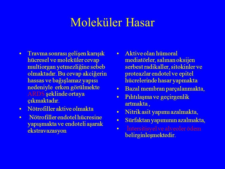 Moleküler Hasar