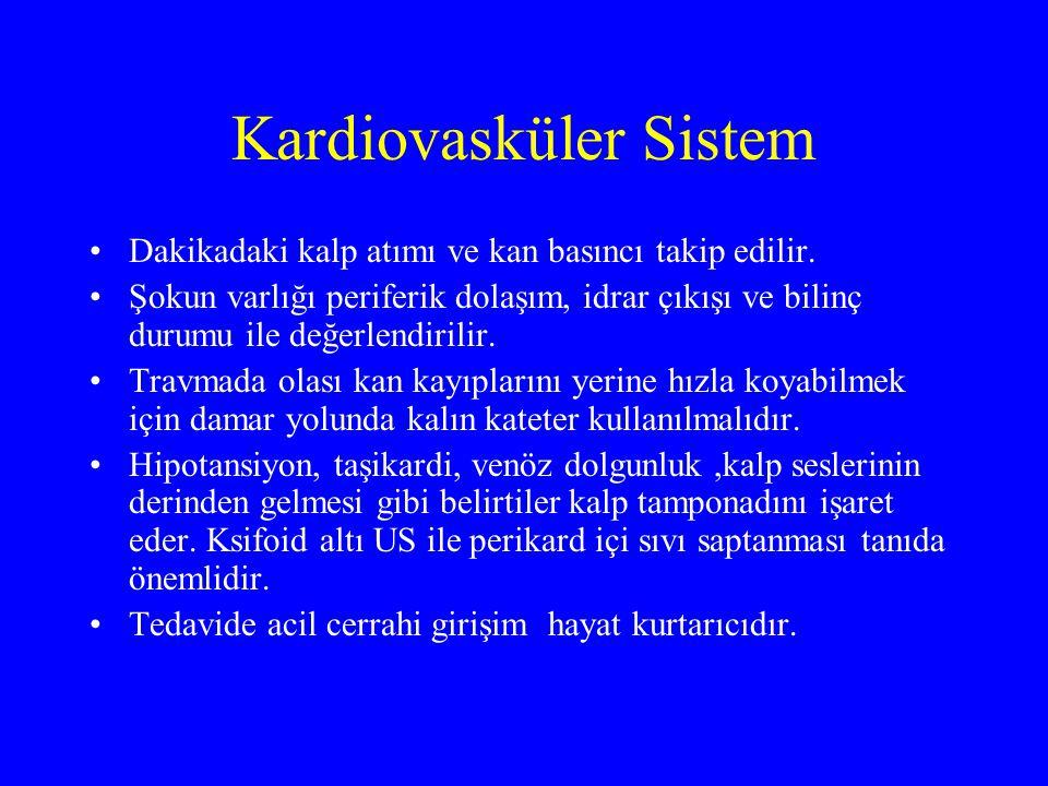 Kardiovasküler Sistem