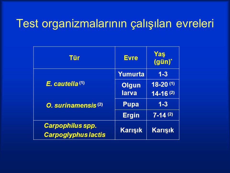 Test organizmalarının çalışılan evreleri