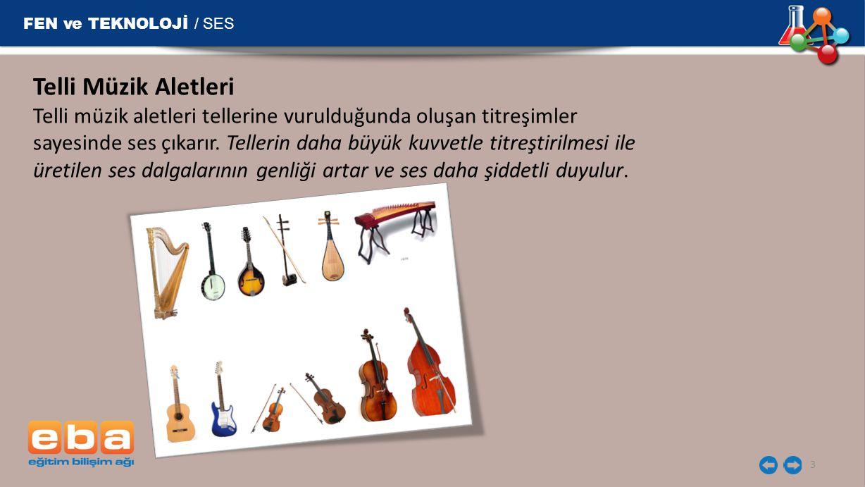 Telli Müzik Aletleri FEN ve TEKNOLOJİ / SES