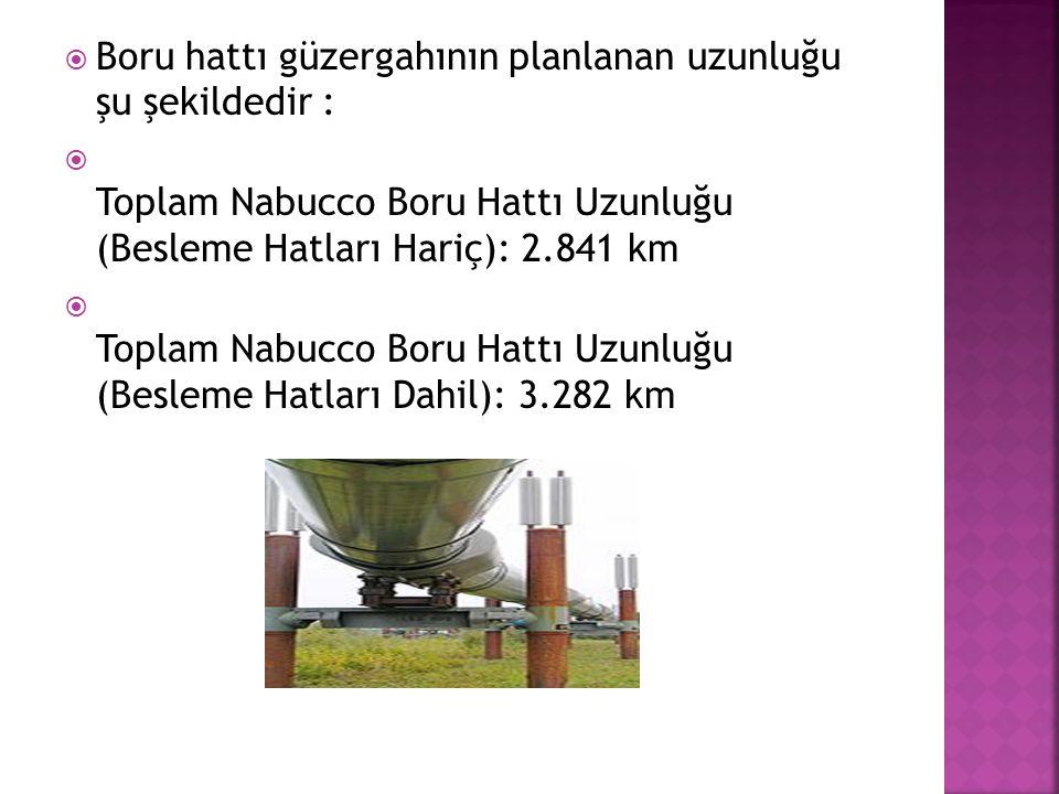 Boru hattı güzergahının planlanan uzunluğu şu şekildedir :