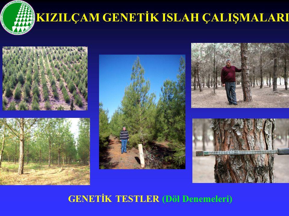 GENETİK TESTLER (Döl Denemeleri)