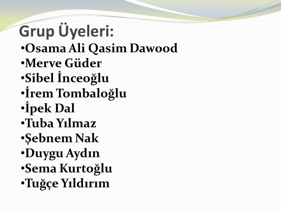 Grup Üyeleri: Osama Ali Qasim Dawood Merve Güder Sibel İnceoğlu