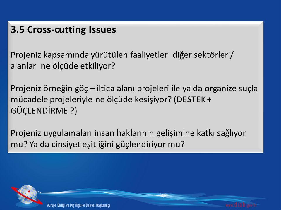 3.5 Cross-cutting Issues Projeniz kapsamında yürütülen faaliyetler diğer sektörleri/ alanları ne ölçüde etkiliyor