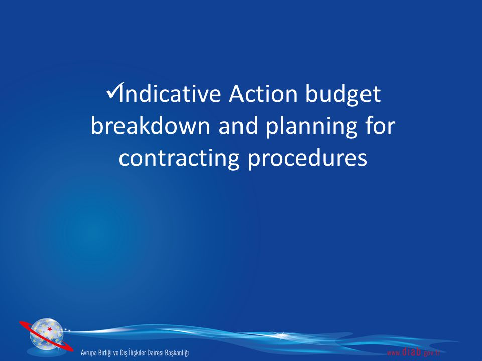 Indicative Action budget breakdown and planning for contracting procedures