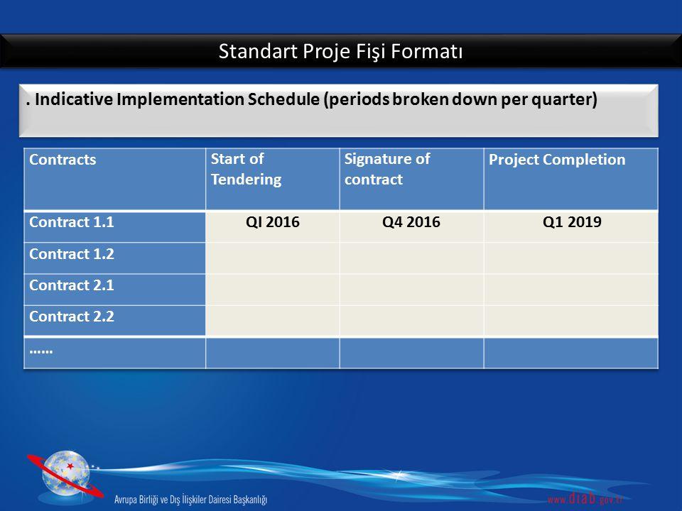 Standart Proje Fişi Formatı
