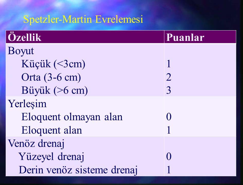 Spetzler-Martin Evrelemesi