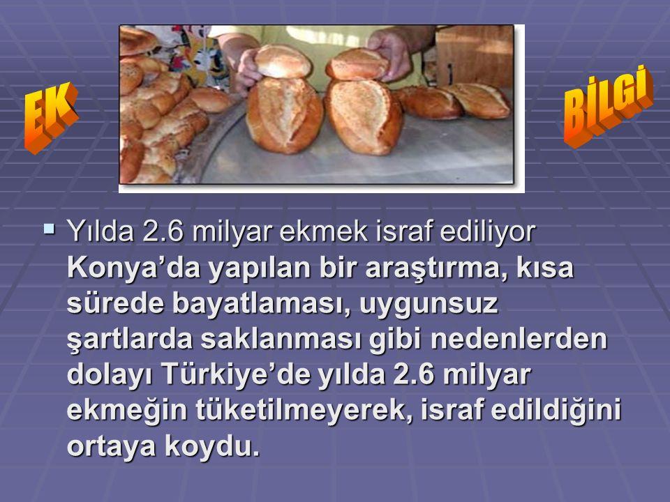 BİLGİ EK.