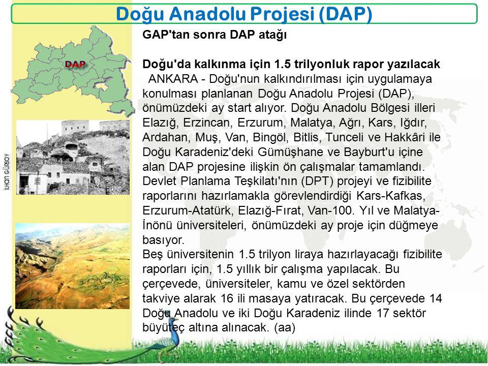 Doğu Anadolu Projesi (DAP)