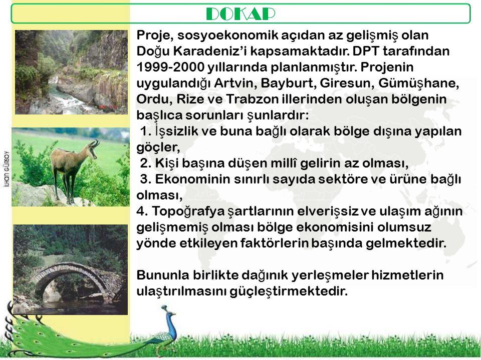 DOKAP Proje, sosyoekonomik açıdan az gelişmiş olan Doğu Karadeniz'i kapsamaktadır. DPT tarafından.