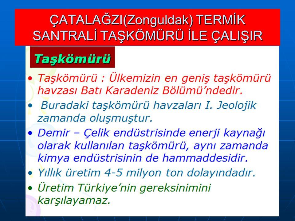 ÇATALAĞZI(Zonguldak) TERMİK SANTRALİ TAŞKÖMÜRÜ İLE ÇALIŞIR