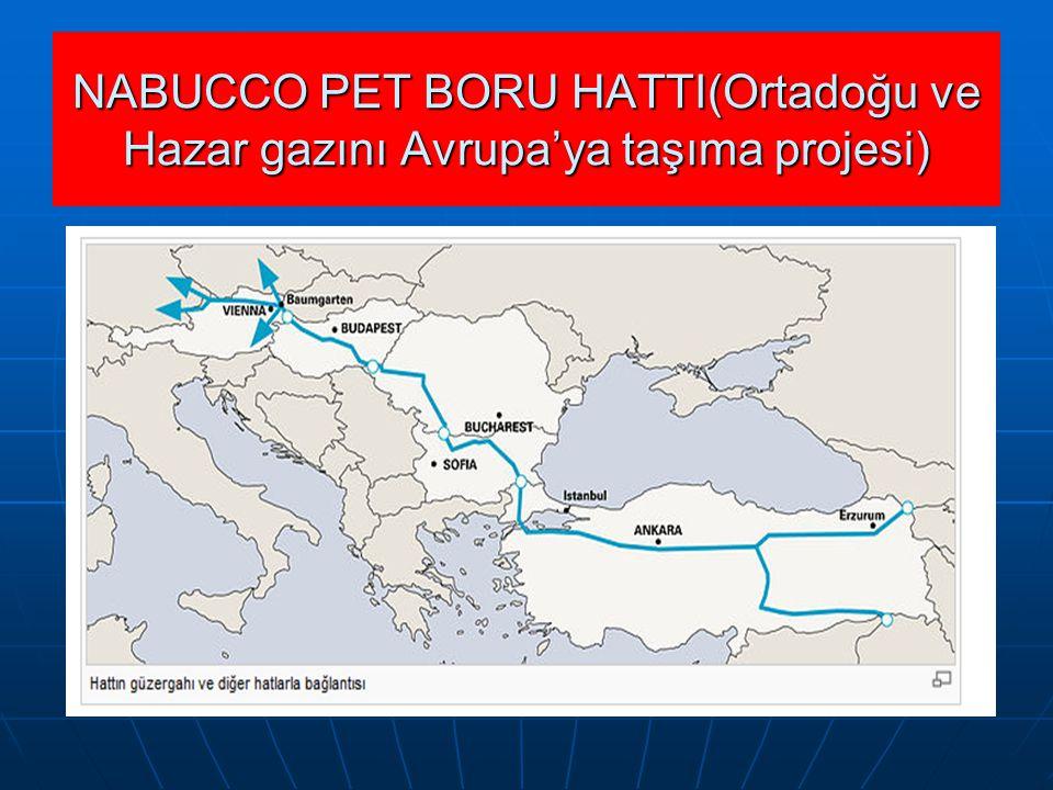 NABUCCO PET BORU HATTI(Ortadoğu ve Hazar gazını Avrupa'ya taşıma projesi)