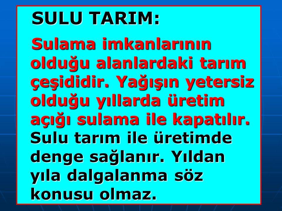 SULU TARIM: