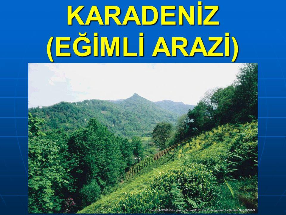 KARADENİZ (EĞİMLİ ARAZİ)