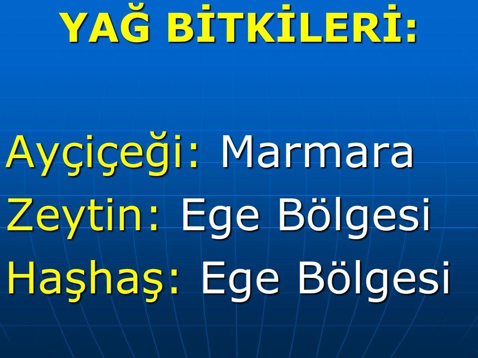 Ayçiçeği: Marmara Zeytin: Ege Bölgesi Haşhaş: Ege Bölgesi