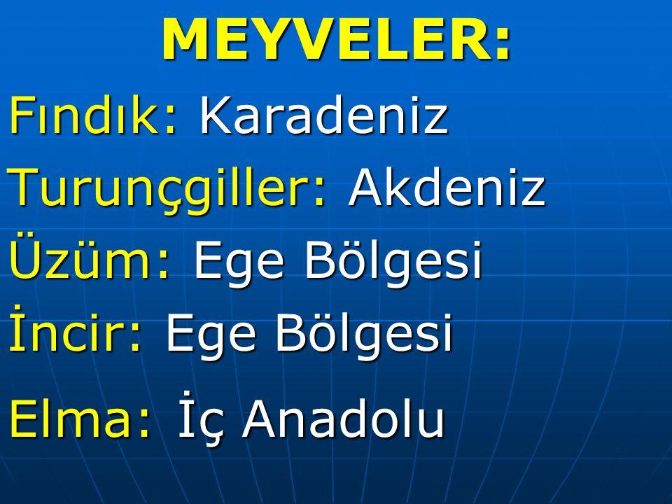 MEYVELER: Fındık: Karadeniz Turunçgiller: Akdeniz Üzüm: Ege Bölgesi