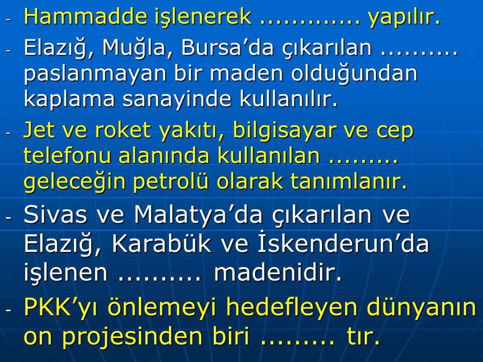 PKK'yı önlemeyi hedefleyen dünyanın on projesinden biri ......... tır.