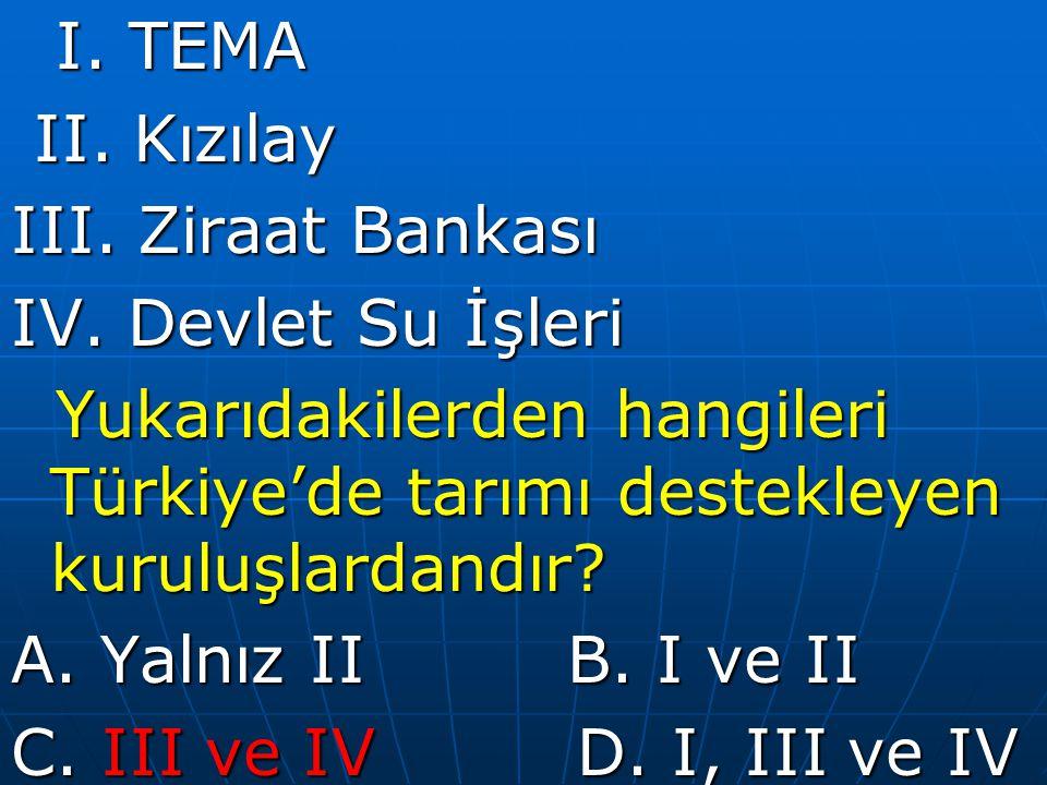 I. TEMA II. Kızılay. III. Ziraat Bankası. IV. Devlet Su İşleri. Yukarıdakilerden hangileri Türkiye'de tarımı destekleyen kuruluşlardandır
