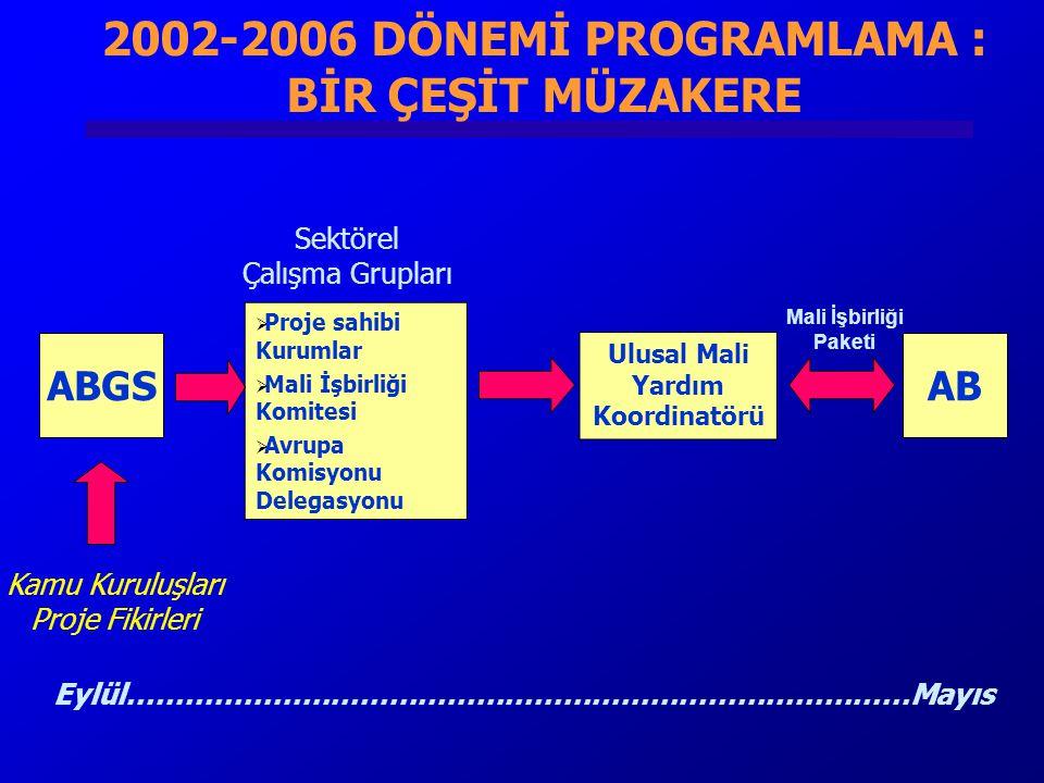2002-2006 DÖNEMİ PROGRAMLAMA : BİR ÇEŞİT MÜZAKERE