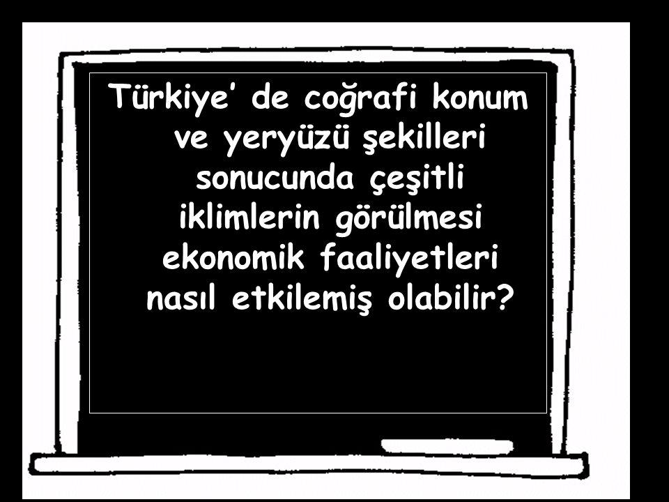 Türkiye' de coğrafi konum ve yeryüzü şekilleri sonucunda çeşitli iklimlerin görülmesi ekonomik faaliyetleri nasıl etkilemiş olabilir
